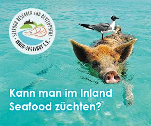 Kann man im Inland Seafood züchten?