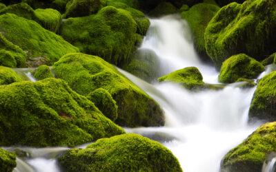 Wasserrechte und Wasserschutzgebiete