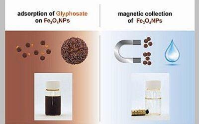 Magnetische Nanopartikel entfernen Glyphosat aus Wasser