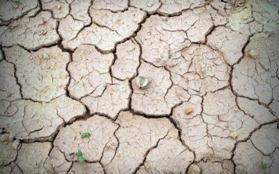 17. Trinkwasserfachtagung: Fokus Klimawandel