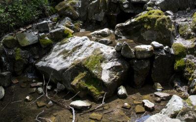 """Weltwassertag 2021 """"Valuing Water"""": der Wert des Grundwassers"""